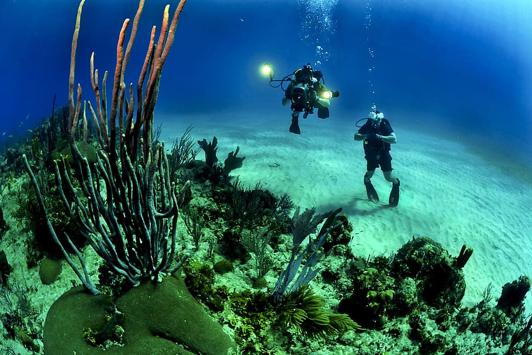 צלילה – אטרקציה פופולרית ביוון